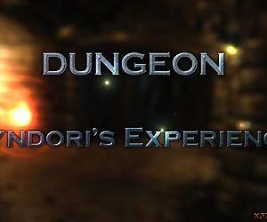 Dungeon 3 - Syndoris Experience